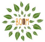 logo-BOOM